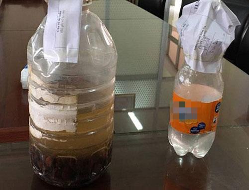Rượu ngâm cà độc dược khiến 7 người Thái Bình gục trên bàn tiệc