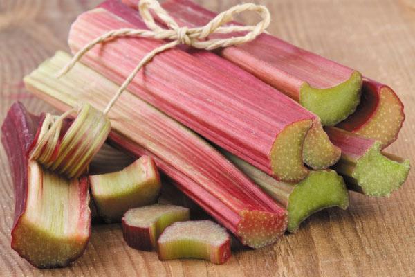 Rhubarb 6046 1440146089 10 loại rau củ giúp tăng trưởng chiều cao nhahanghanoi.vn