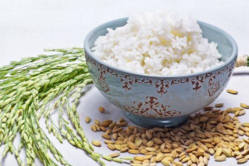 13-4-green-revolution-bigger-rice-bowl_1