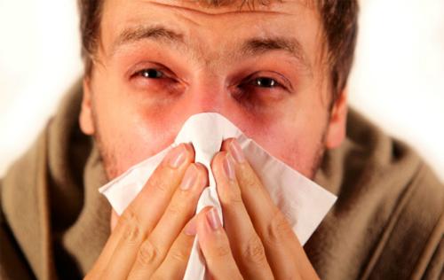 các mẹo phòng hạn chế cảm cúm hiệu quả