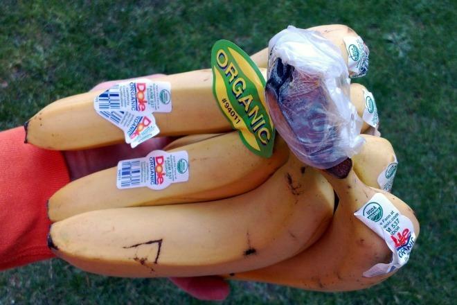 Mẹo bảo quản thực phẩm không hao hụt dinh dưỡng