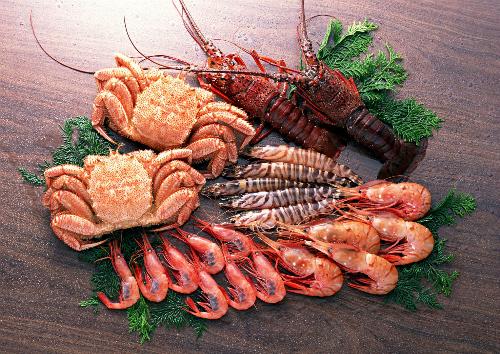Chất chitosan được chiết xuất từ vỏ tôm, cua giúp trịbệnhvẩy nến.