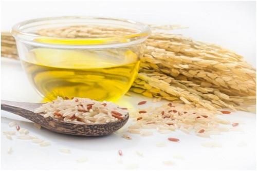 Dầu gạo là một trong những nguồn cung chất béo cân đối và khá lý tưởng.