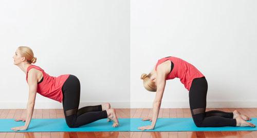 10-dong-tac-yoga-nen-lam-moi-ngay-1