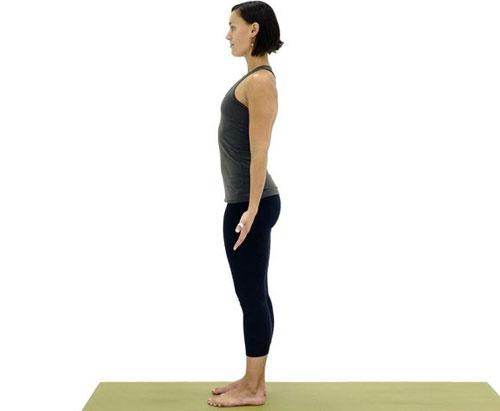 10-dong-tac-yoga-nen-lam-moi-ngay-5