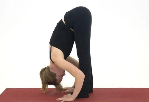 10-dong-tac-yoga-nen-lam-moi-ngay-6