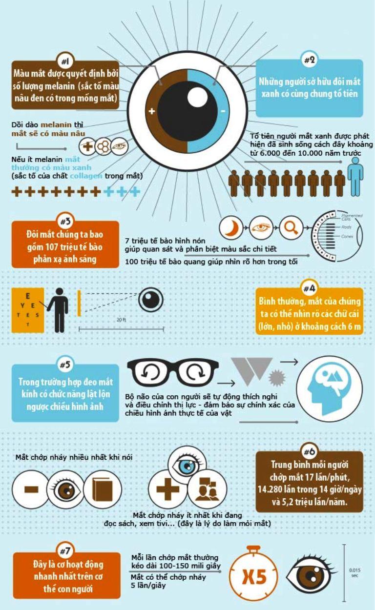Điều thú vị về đôi mắt có thể bạn chưa biết