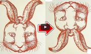 Kiểm tra độ tinh mắt qua 6 câu đố ảo ảnh quang học