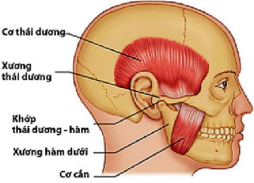 moi-ham-dau-tai-buoi-sang-coi-chung-bi-roi-loan-thai-duong-ham