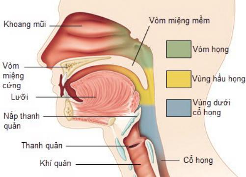 Dấu hiệu phát hiện sớm ung thư vòm họng
