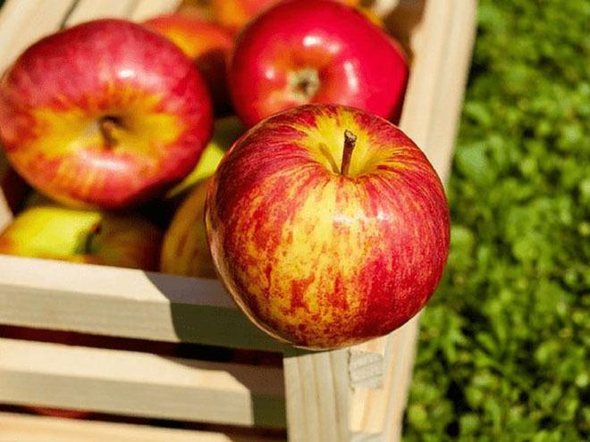 8 thực phẩm ăn sai giờ sẽ ảnh hưởng đến sức khỏe