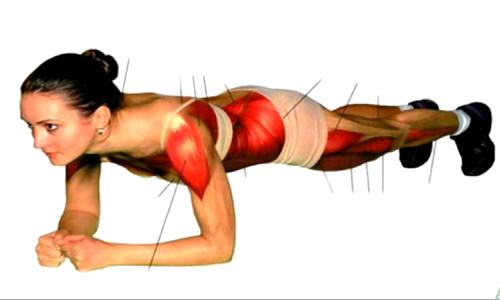 Bài tập Plank challenge tác động lên nhiều nhóm cơ ở thân trước và thân sau, giúp loại bỏ mỡ thừa ở các vùng này. Ảnh: