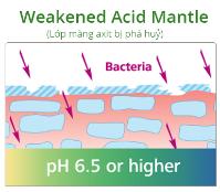 Dược mỹ phẩm Sebamed - sản phẩm chuyên biệt cho các bệnh lý da - 3