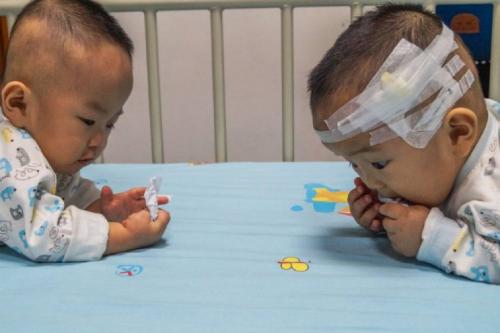 Kangkang và Lele. Ảnh:Quỹ Từ thiện Trẻ em Trung Quốc.