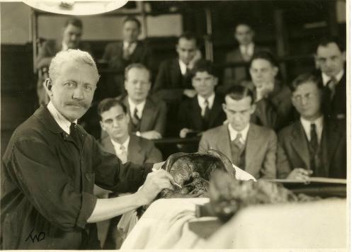 Giá sư Green tiến hành một cuộc giải phẫu trong thư viện y khoa.