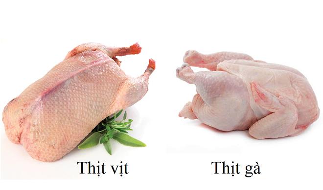 Thịt vịt và thịt gà đều cung cấp nhiều giá trị dinh dưỡng tốt cho sức khỏe. Ảnh: Medicaldaily