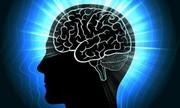 Đầu to có thông minh hơn đầu nhỏ?