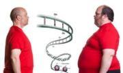 """Phát hiện một loại gene giúp bạn """"ăn mãi không béo"""""""