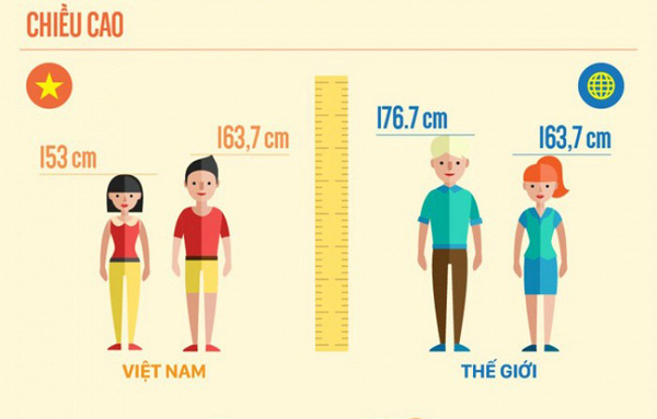 Chiều cao trung bình của người dân Việt Nam so với chuẩn thế giới.