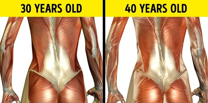 Tiến trình thay đổi trong cơ thể qua từng độ tuổi