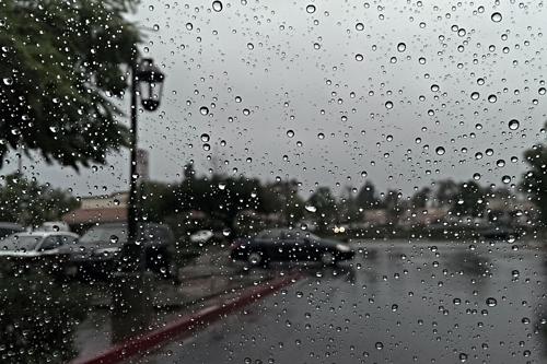 Trời mưa khiến con người buồn ngủ. Ảnh: Vox.