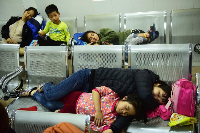 Nhiều gia đình mang con vật vờ, ngủ tạm tại hành lang chờ xét nghiệm. Ảnh: Giang Huy
