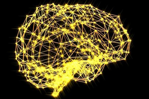 Stress giết chết các tế bào thần kinh, làm não bị thu nhỏ, nguy cơ mắc bệnh tâm thần. Ảnh: Verywell Mind