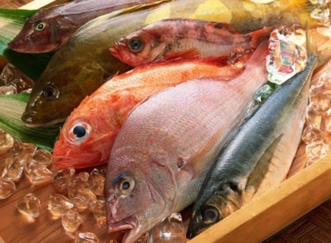 Nhận biết cá tươi hay cá ươn dựa vào quan sát mắt, mang cá, độ đàn hồi của thịt cá. Ảnh: Health Fully.