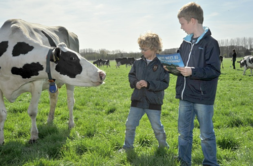 Sự cao lớn của người Hà Lan gắn liền với nguồn sữa tươi chất lượng mà họ uống hàng ngày. Ảnh: FCV.