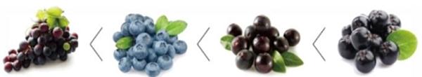 Hàm lượng Anthocyanin có trong quả 80 quả Aronia được tính theo công thức sau: 80 quả nho = 7 quả việt quốc = 5 quả Acai Berry = một quả Aronia.