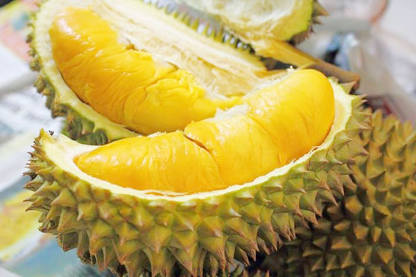 Sầu riêng rất nhiều dinh dưỡng, là loại hoa quả hàng đầu gây tăng cân.