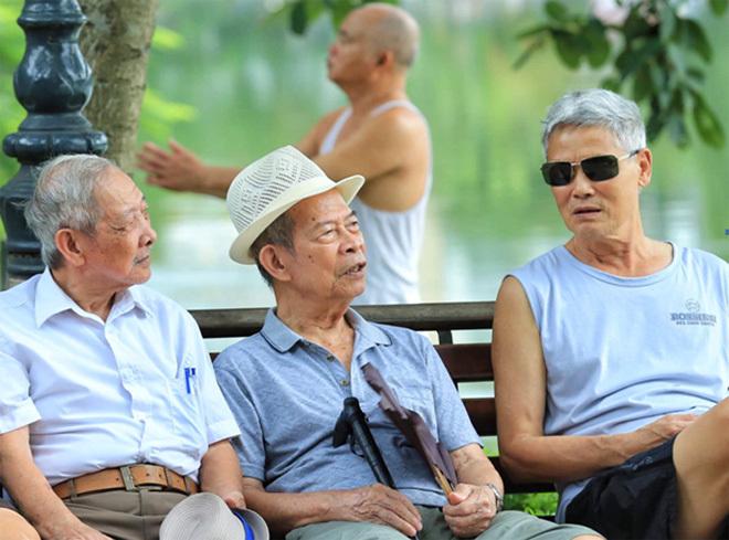 Dân số Việt Nam bước vào giai đoạn rất già năm 2038 - ảnh 1