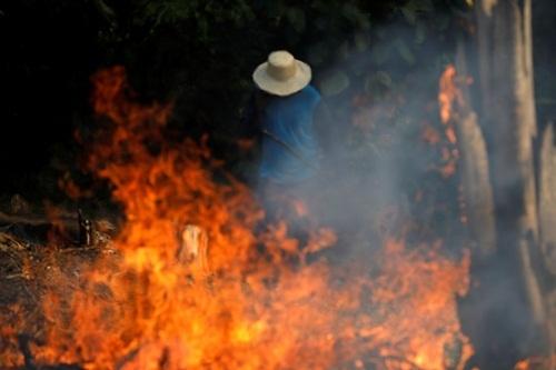 Đám cháy tại rừng Amazon, Brazil, ngày 20/8/2019. Ảnh: Reuters.