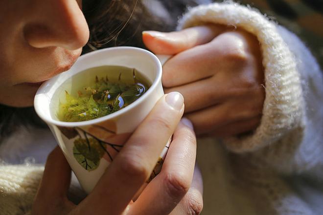 Bài thuốc thảo dược chữa đau họng ho khan - ảnh 1
