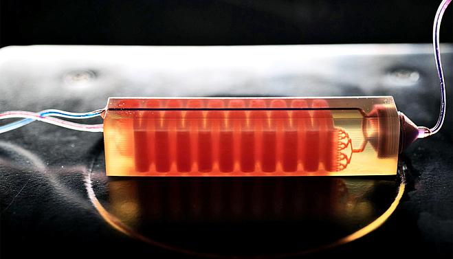 Một bẫy tế bào in 3D mới bắt giữ các tế bào máu để phân lập các tế bào khối u từ mẫu máu. Ảnh: Georgia Tech
