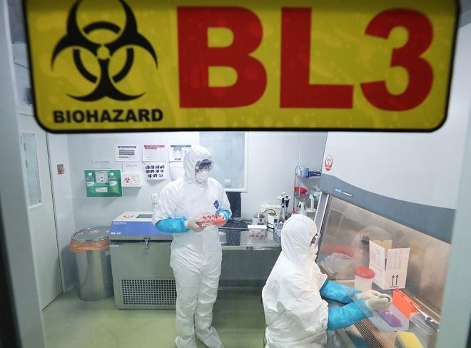 Nhân viên y tế Hàn Quốc tiến hành kiểm tra mẫu bệnh phẩm từ một phụ nữ mắc bệnh viêm phổi từng đến thăm thành phố Vũ Hán. Ảnh: EPA-EFE