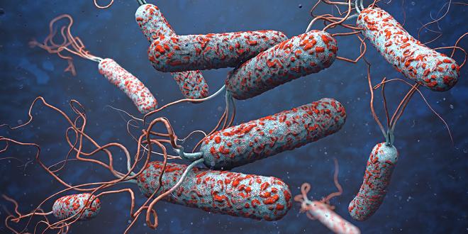 6 đại dịch giết chết nhiều người nhất lịch sử - ảnh 3