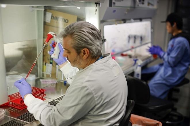 Tìm vaccine corona trong 3 giờ - ảnh 1