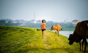 Dân chạy bộ tìm về cung đường làng quê mùa dịch
