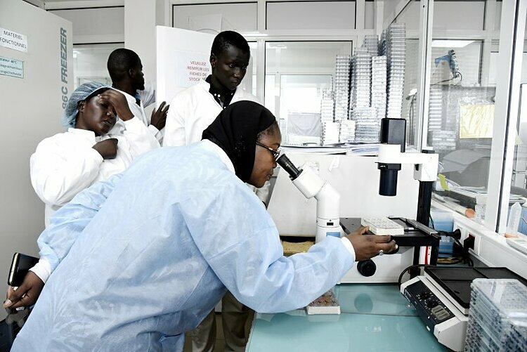 Các nhà khoa học làm việc trong một phòng thí nghiệm tại Viện Pasteur ở Dakar, Sénégal, ngày 3/2. Ảnh: AFP